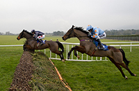 Photo of horse racing at Clonmel Racecourse