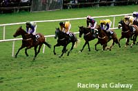 Photo of horse racing at Galway, County Galway