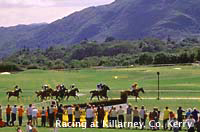 Photo of horse racing at Killarney